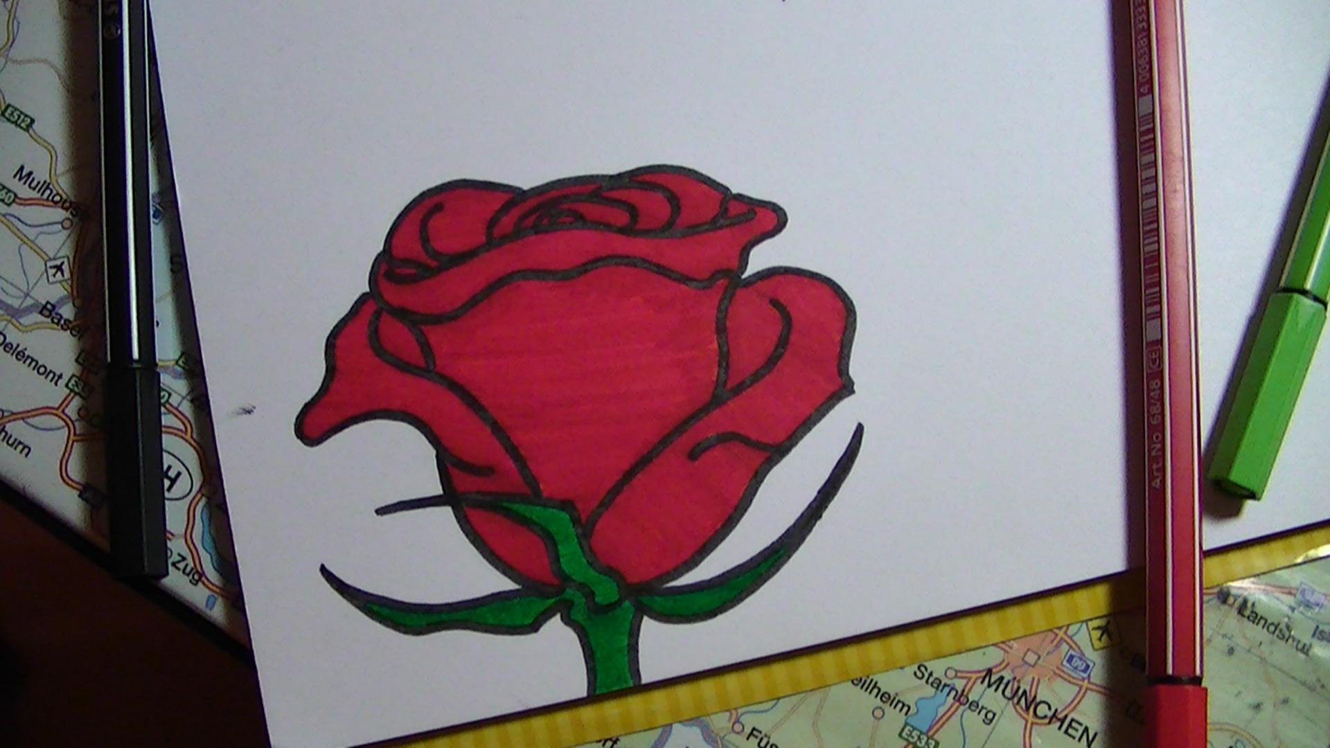 rose pflanzen genial zeichnen lernen. Black Bedroom Furniture Sets. Home Design Ideas